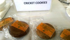 Cricket cookies