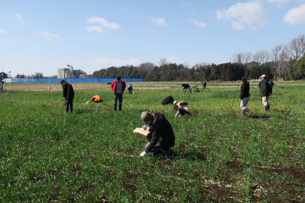 Students from ZEF and IPADS working in the field (Photo: Dr. Günther Manske)
