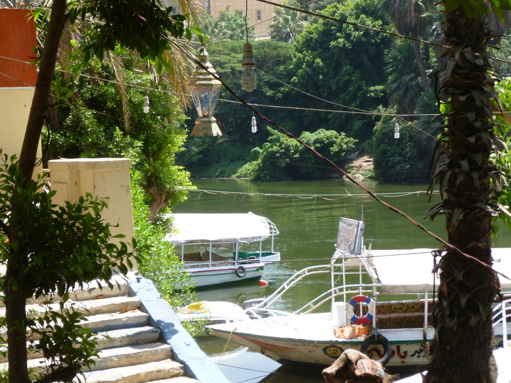 Tree nursery and boat terminal by the Nile Promenade. Photo: Irit Eguavoen