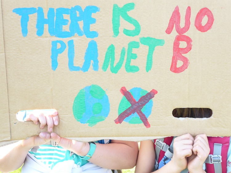 Scientists for future at fridays for future bonn